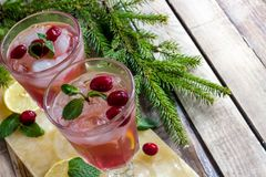 Cold winter cocktail with cranberry Royalty Free Stock Photo
