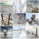 Cold winter collage Royalty Free Stock Photography