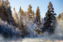 Cold winter day. Cold winter day,  hoarfrost and rime on trees Royalty Free Stock Images
