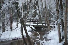 A stream in the woods and bridge. Cold winter day with a stream flowing through the woods with a snow covered ground and bridge in back ground. photo manipulated royalty free stock image