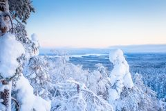 Cold winter day sunset view. Photo from Sotkamo, Finland.  stock photography