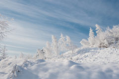 Cold winter day, very sunny. Royalty Free Stock Photos