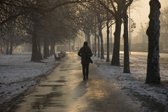 Cold Winter Day. Woman going to work on a winter day Stock Photos