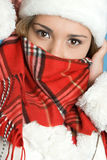 Cold Winter Girl Royalty Free Stock Photo