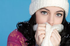 Cold Winter Girl Royalty Free Stock Image