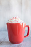Cold Winter Hot Chocolate Drink With Whipped Cream Royalty Free Stock Photo
