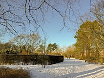 Cold winter  in the little city. Denmark Royalty Free Stock Photos