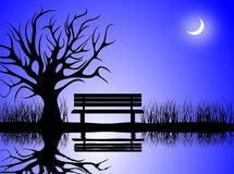 A Cold Winter Night by the Lake. A cold winter moon lit night scene of a park with a bench and a withered tree Stock Photos