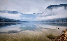Cold winter morning at the Bohinj lake in Triglav national park Royalty Free Stock Images