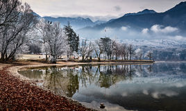 Cold winter morning at the Bohinj lake in Triglav national park Stock Photography
