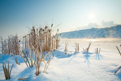 Cold Winter Morning Landscape Stock Photo