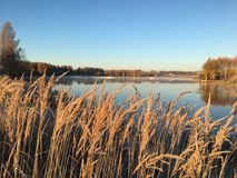 Sunrise. Cold winter morning in Latvia royalty free stock images