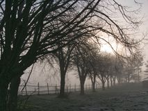 Cold winter morning. Sunrise on a cold, foggy winter morning Stock Images