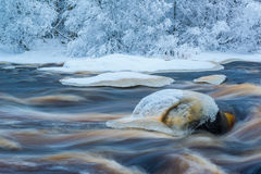 Cold winter river Royalty Free Stock Photo