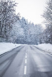 Cold winter road with wonderful white snow covered forest trees. The country street is wet and has a curcve in cold colors Stock Photo