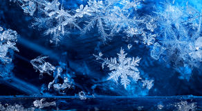 Cold winter season ice crystal snow flakes Stock Images