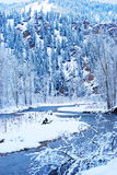Cold Winter Stock Photography