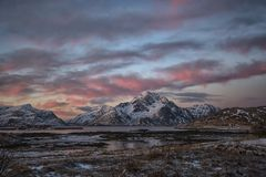 Cold, cold winterday in the Arctic. Winter colours! Lofoten in its winter costume displays a palette of deep reds and blues until after the New Year when it Royalty Free Stock Images