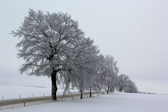 Cold winters day Stock Image