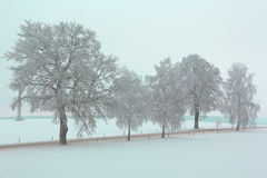 Cold winters day Royalty Free Stock Photography