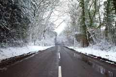 Cold winters day Royalty Free Stock Photo