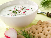 Cold yoghurt soup Stock Image