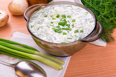 Cold yogurt soup with dill and yolk Stock Image