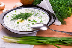 Cold yogurt soup with dill and yolk Stock Photos