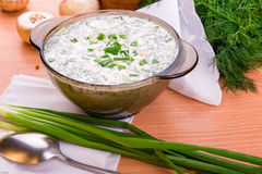 Cold yogurt soup with dill and yolk Stock Images