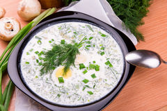 Cold yogurt soup with dill and yolk Royalty Free Stock Photo
