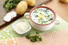 Cold yogurt soup with dill and yolk, russian traditional dish - okroshka Royalty Free Stock Photography