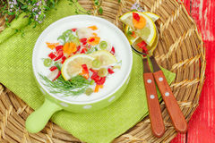 Cold Yogurt soup Royalty Free Stock Photos