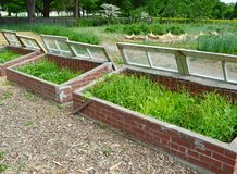 Coldframe royalty free stock image