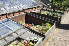 Coldframes Royalty Free Stock Images