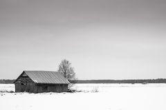 Coldness Of February. February is a cold month up in the Northern Finland. Even the barn houses seem to look for a warmer place to be royalty free stock photo