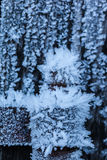 Coldness. Macro shot of a wooden fence covered with ice crystals due to the hoarfrost in winter royalty free stock image
