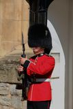 Coldstream Guard Stock Photo