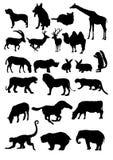 Coleção 1 dos animais ilustração stock