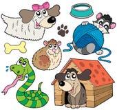 Coleção 2 do animal de estimação Fotografia de Stock