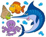 Coleção 3 dos animais aquáticos Fotografia de Stock Royalty Free