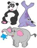 Coleção 3 dos animais do JARDIM ZOOLÓGICO Imagem de Stock Royalty Free