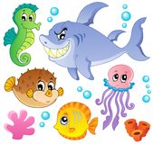 Coleção 4 dos peixes do mar e dos animais Fotos de Stock Royalty Free
