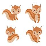 Coleção adorável dos esquilos no estilo liso moderno Ilustração do vetor ilustração do vetor