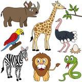 Coleção africana dos animais [1] Imagem de Stock Royalty Free