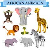 Coleção africana dos animais dos desenhos animados ilustração royalty free