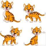 Coleção bonito dos desenhos animados do tigre Foto de Stock