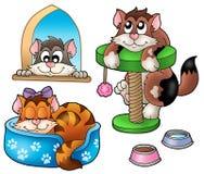 Coleção bonito dos gatos Fotografia de Stock Royalty Free