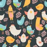 Coleção bonito dos pássaros Imagens de Stock Royalty Free