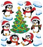 Coleção bonito dos pinguins   Imagem de Stock