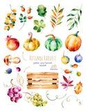 A coleção brilhante com queda sae, ramos, cesta de madeira ilustração royalty free